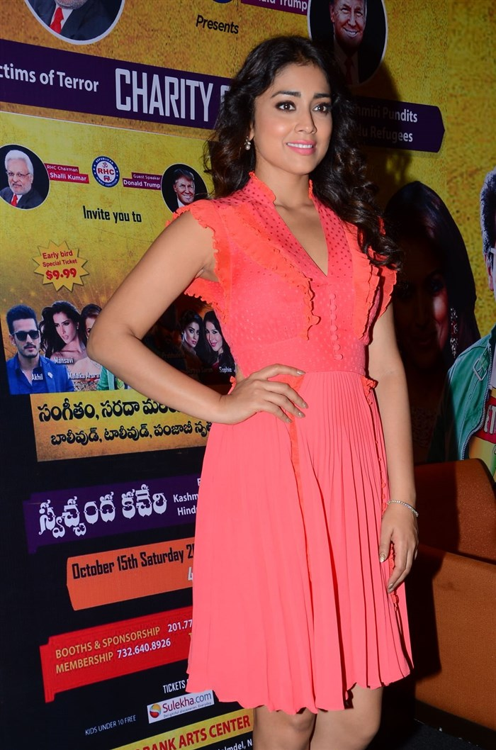 Telugu Hot Girl Shriya Saran Milky Thighs Legs Show In Pink Skirt At Press Meet