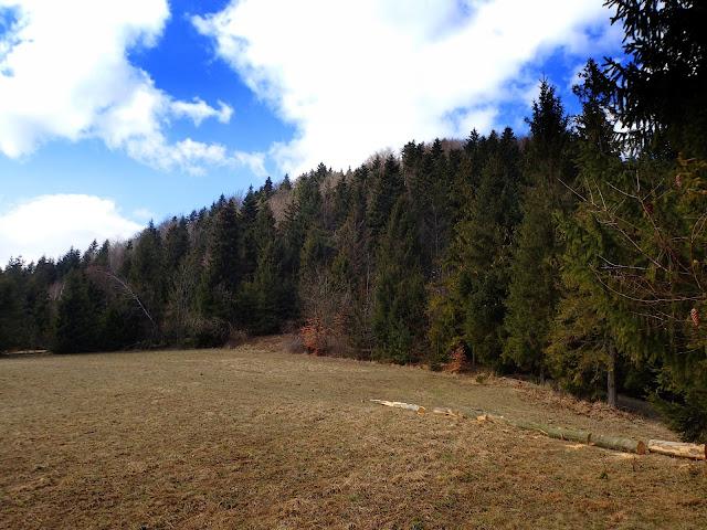 Polana nad przełęczą Rydza-Śmigłego