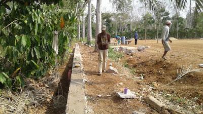 Pembangunan TPT dan Drainase di Pekon Neglasari Diduga Bermasalah