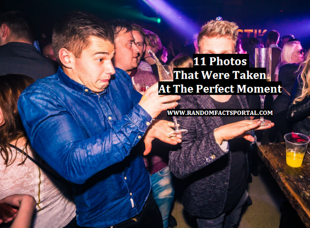11 Photos That Were Taken At The Perfect Moment
