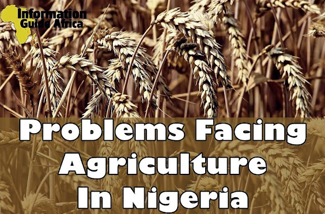 Problems Of Agriculture In Nigeria