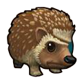 Hedgehog - Pirate101 Hybrid Pet Guide