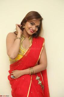 Actress Ashwini in Golden choli Red saree Spicy Pics ~  055.JPG