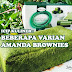 Sensasi Menyantap Berbagai Varian Brownies (Cheesecream, Green Tea, Blueberry, Brownies Bakar) dari Amanda Brownies