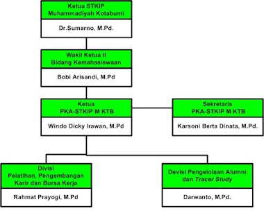 Struktur Organisasi  Pusat Karir