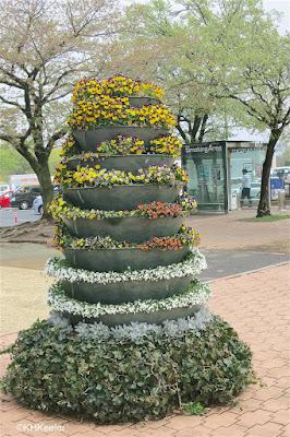 flower display, Japan