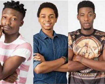 Who Will Go Home in #BBNaija This Week? Miyonse, Efe and Soma Face Eviction