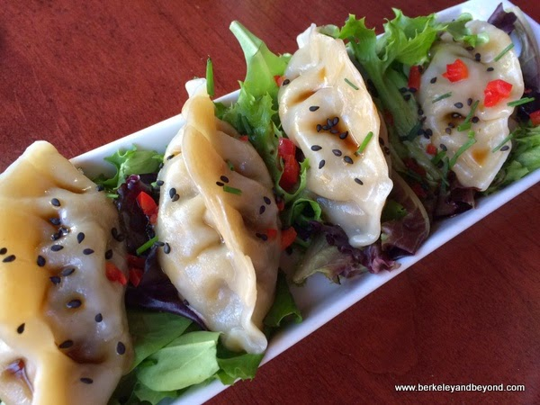 Italian Potstickers at Bobo's Lounge in San Francisco