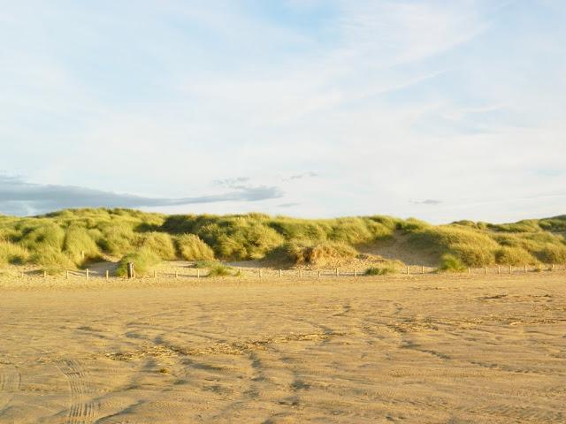 Beach Photo Diary