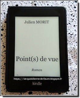 Vie quotidienne de FLaure : [Lecture] Point(s) de vue par MORIT Julien