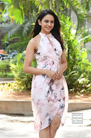 rakul preet singh khakee success meet 36.jpg