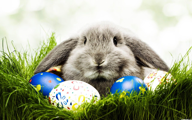 Easter HD Wallpapers 2018