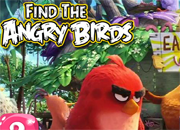 Find the Angry Birds