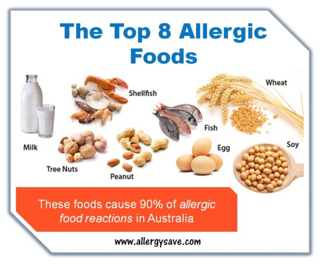 food allergy Free food allergy factsheets that cover all of the top 14 allergens, such as peanut, milk, egg, fish and many more.
