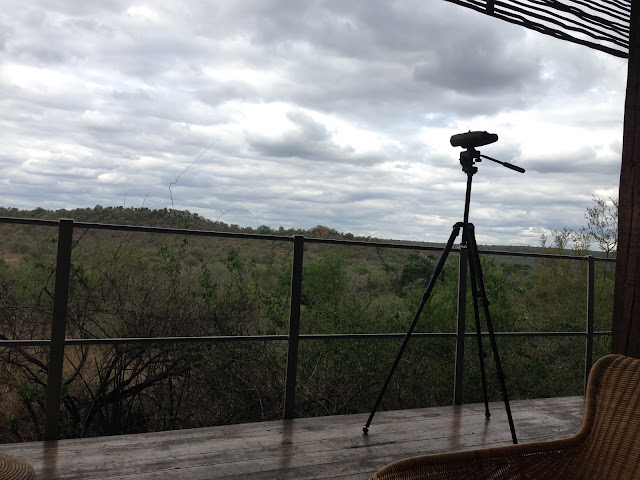 singita viewing area, outdoor, pure nature, room with a view