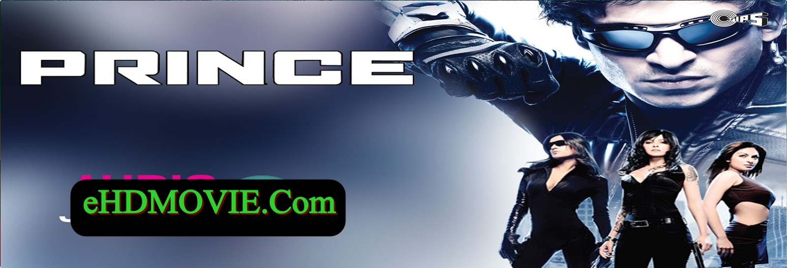 Prince 2010 Full Movie Hindi 720p - 480p ORG BRRip 300MB - 1.3GB ESubs Free Download