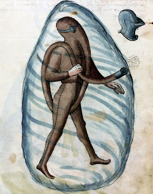 medieval scuba suit from Bellifortis