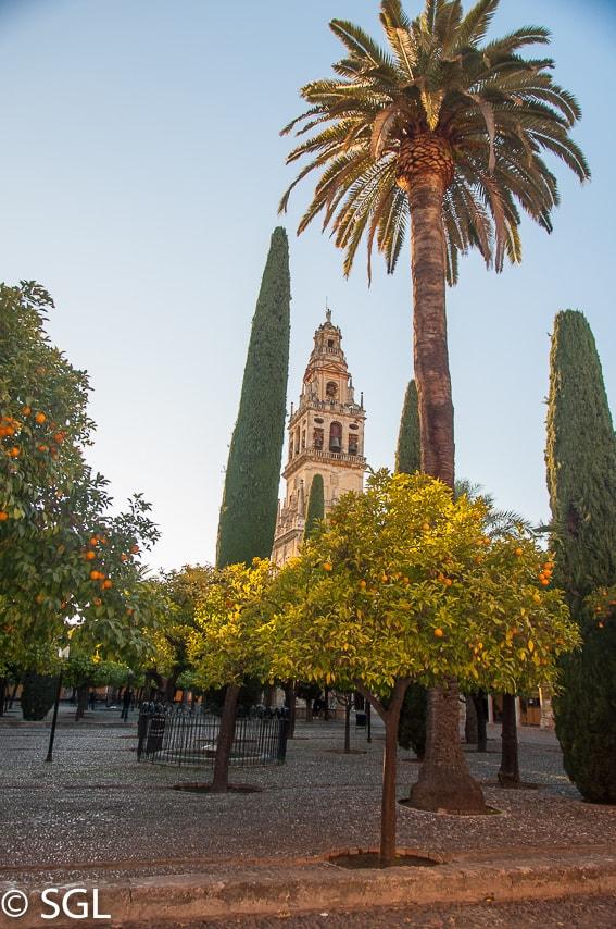 Patio de la mezquita de Córdoba