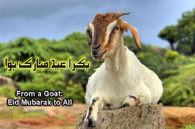 Bakra Eid Mubarak Whatsapp Images
