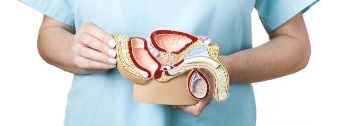 suplemento alimenticio prostata