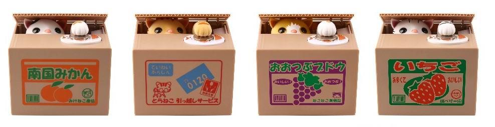 Nama Untuk Kucing Comel Fotografi Gambar Kucing Comel