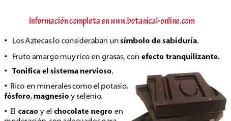 Blog de Plantas: ¿ COMER CHOCOLATE ES BUENO O MALO PARA LA