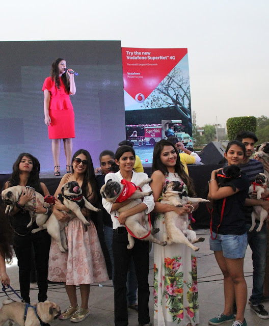 Vodafone Celebrates SuperNet 4G with Pug Parade