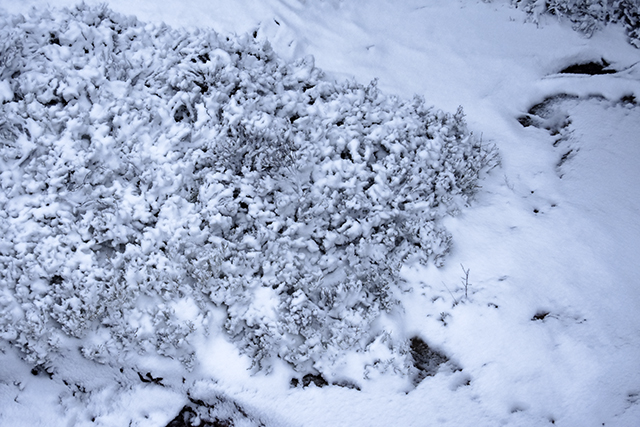 joulu,pikkujoulu,arthurs,lomatalo,mökki,cottage,finnish cottage,finland,suomi,lomamökki,kuusi,arkitunnelmia,sisustusblogi,sisustus,stailaus,porkkalanniemi,kirkkonummi,lomarengas,talvi,suomen talvi,suomenlahti