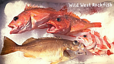 vermilion, speckled, starry, flag, local seafood