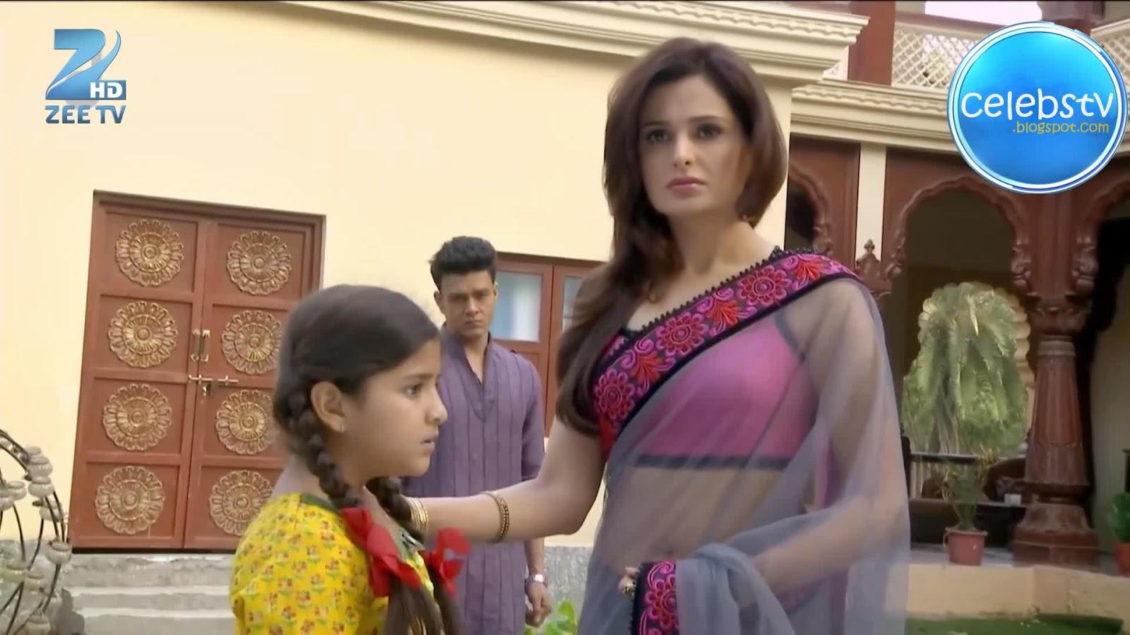 Monica Bedi Super Hot Navel Show In Transparent Saree -5317