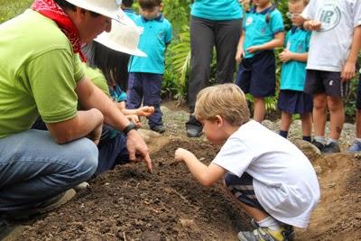 Educación ambiental en la escuela