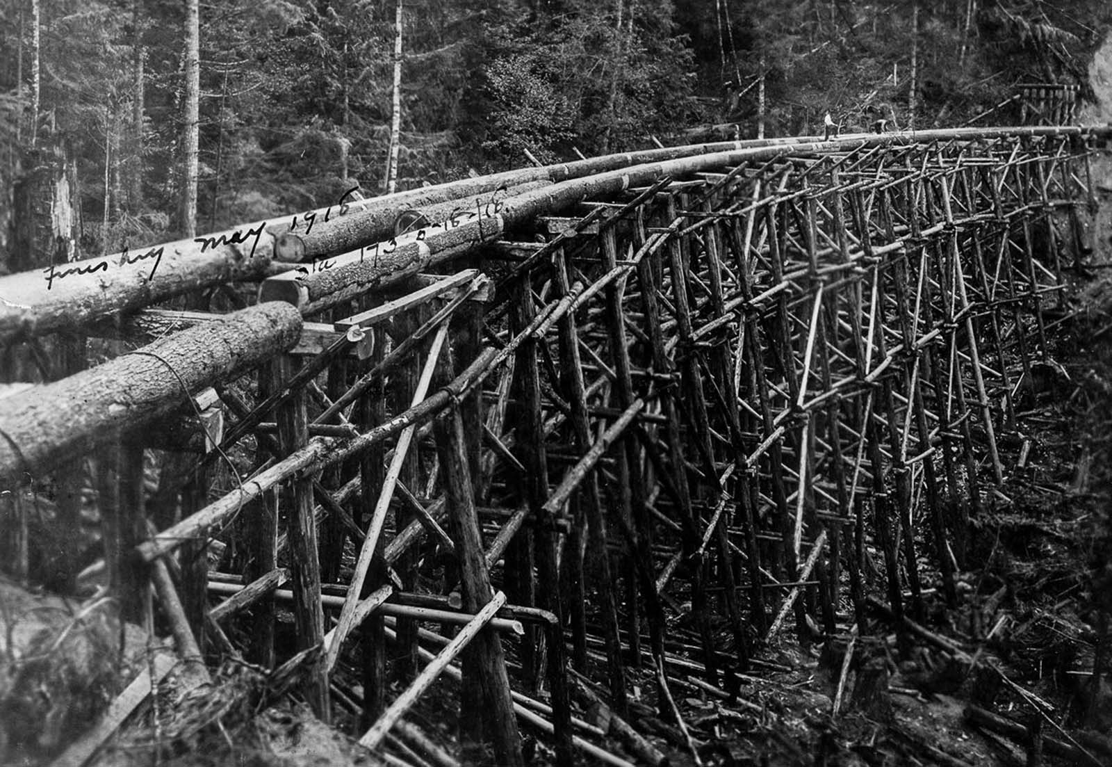A trestle bridge under construction. 1918.