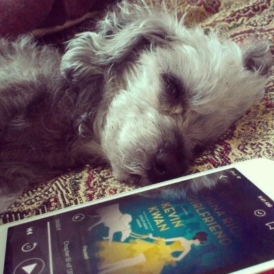 A sleek grey poodle, Murchie, lays on his side on a red tapestry comforter. In front of him is a red-bordered iPod with the cover of China Rich Girlfriend on its screen. the cover features a vector-style drawing of a Chinese woman wearing a yellow dress with a short skirt and a long train. She leads two large white dogs on leashes against a blue background.