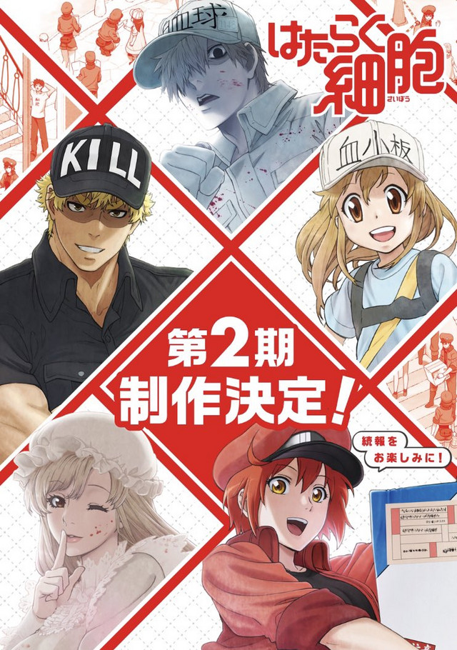 Anime Hataraku Saibou tendrá segunda temporada