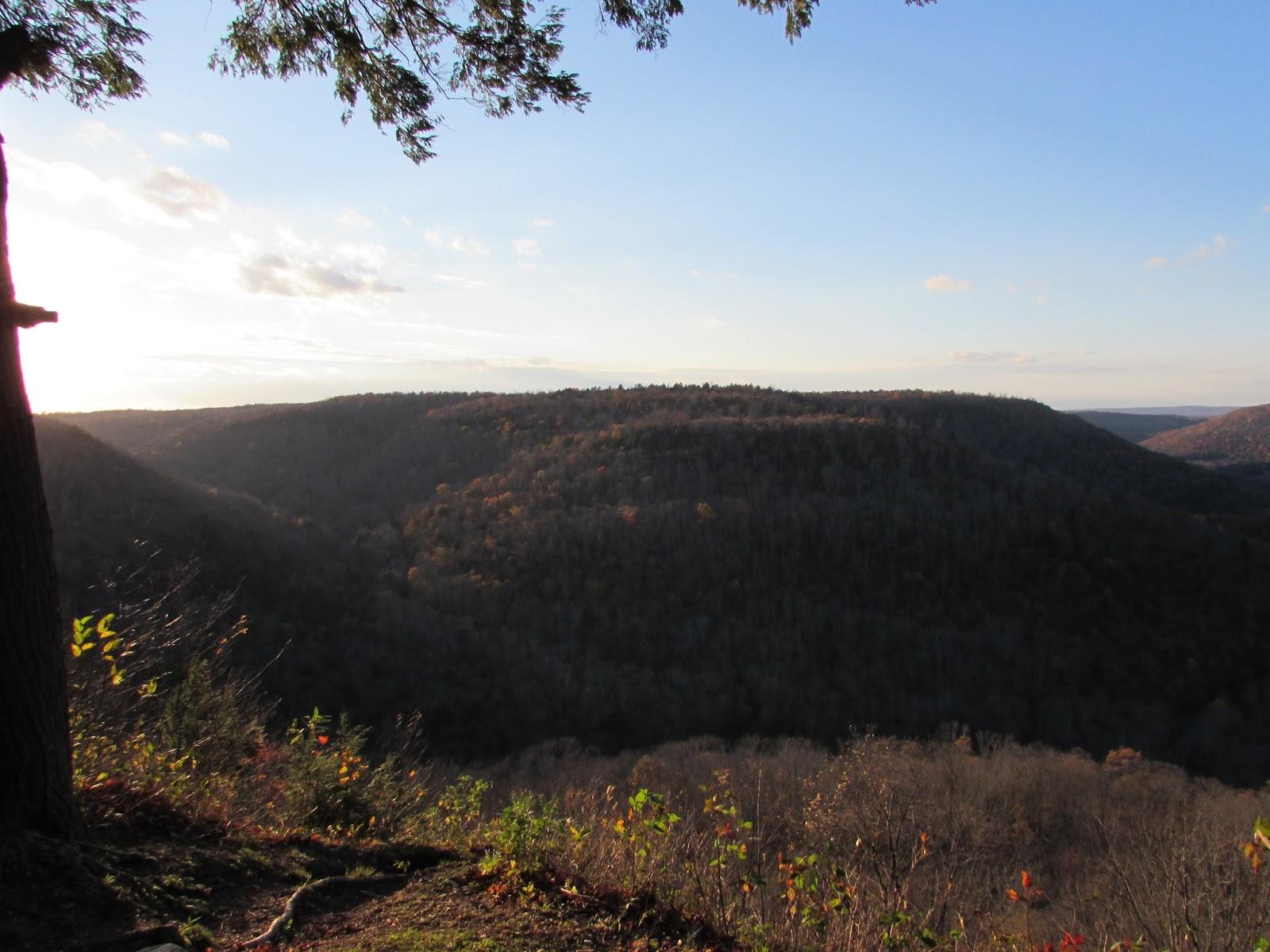 Loyalsock Canyon Vista, Worlds End State Park, Sullivan County, PA