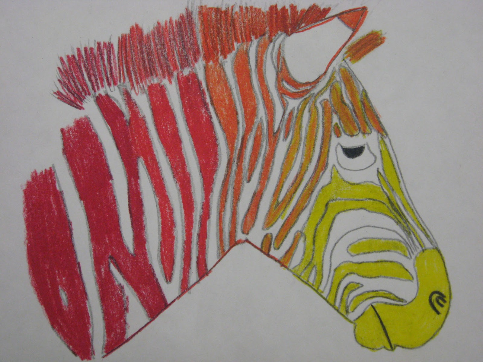 6th Grade Analogous Color Zebras