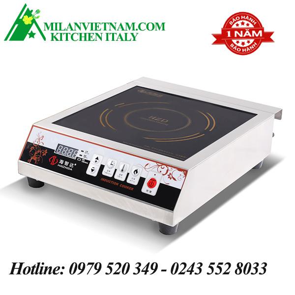 Bếp từ công nghiệp hcm