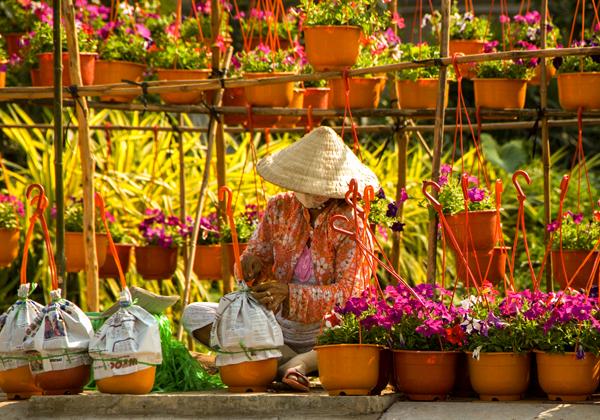 Chăm chút hoa xuân - tại làng hoa Sa Đéc