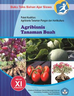 Buku SMK AGRIBISNIS TANAMAN BUAH 3 Kelas 11 Kurikulum 2013
