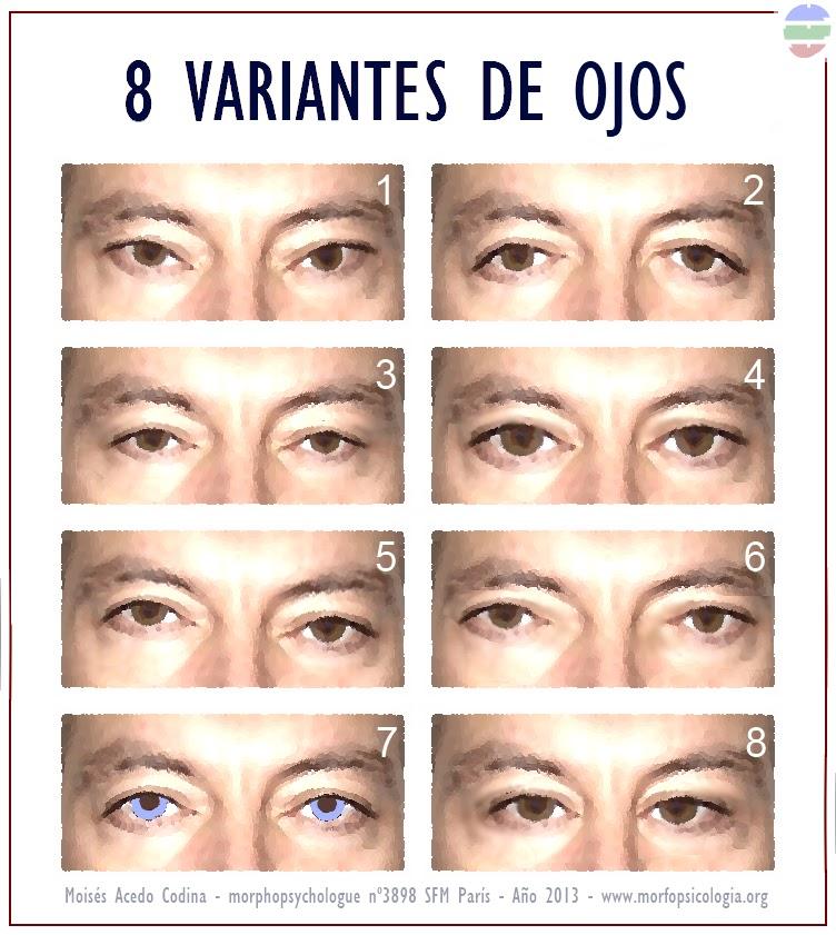 BLOGGER WWW.MORFOPSICOLOGIA.ORG: 8 TIPOS DE OJO Y SU SIGNIFICADO