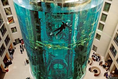 Obra de ingeniería acuario gigante