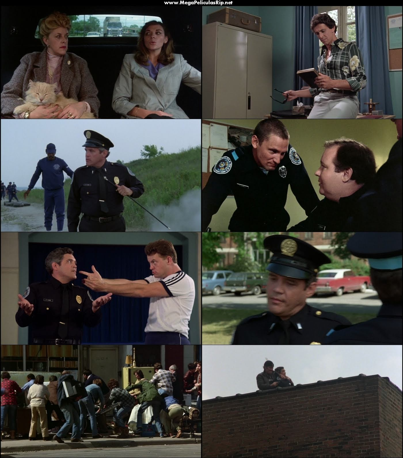 Locademia de policia 1080p Latino