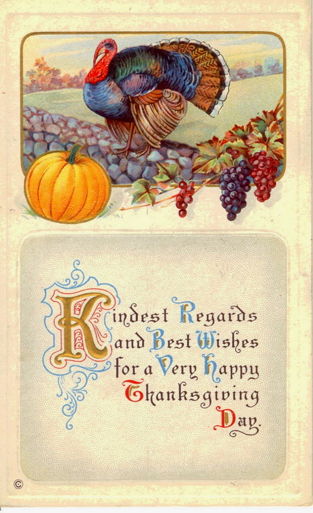 25 Colorful Vintage Thanksgiving Turkey Postcards Everyday