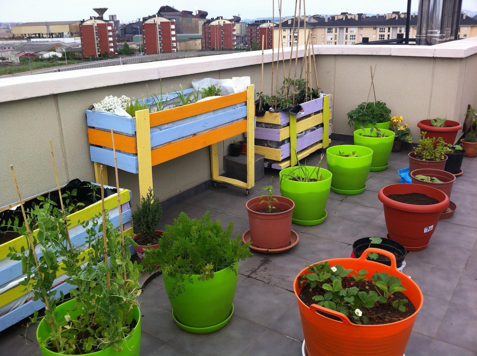 Huerteros el huerto de monica el balcon verde - El huerto en casa ...