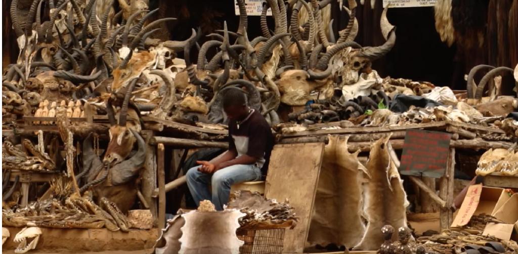 Akodessawa fetish market.