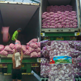 harga bawang putih di Solok Selatan,harga jual bawang putih di Solok Selatan