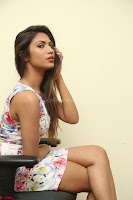 Nishi Ganda stunning cute in Flower Print short dress at Tick Tack Movie Press Meet March 2017 192.JPG
