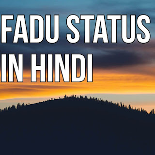 Fadu status in Hindi 2018