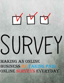 Making An Online Business By Taking Paid Online Surveys Everyday
