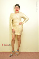 Actress Pooja Roshan Stills in Golden Short Dress at Box Movie Audio Launch  0109.JPG